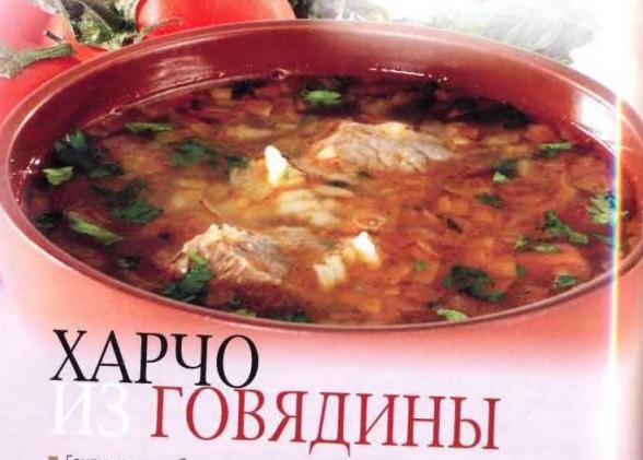 Рецепты супа харчо. Суп харчо из баранины, говядины, свинины и курицы